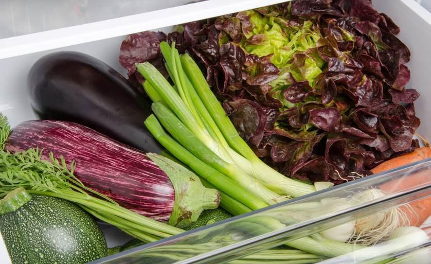 cara menyimpan makanan ke dalam kulkas