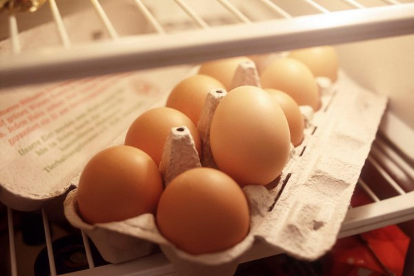 menyimpan telur di dalam kulkas